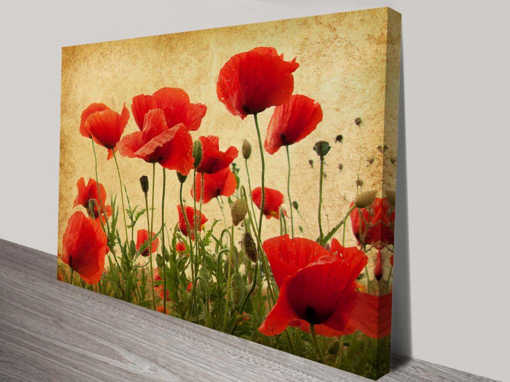 Red Poppy Flower Art