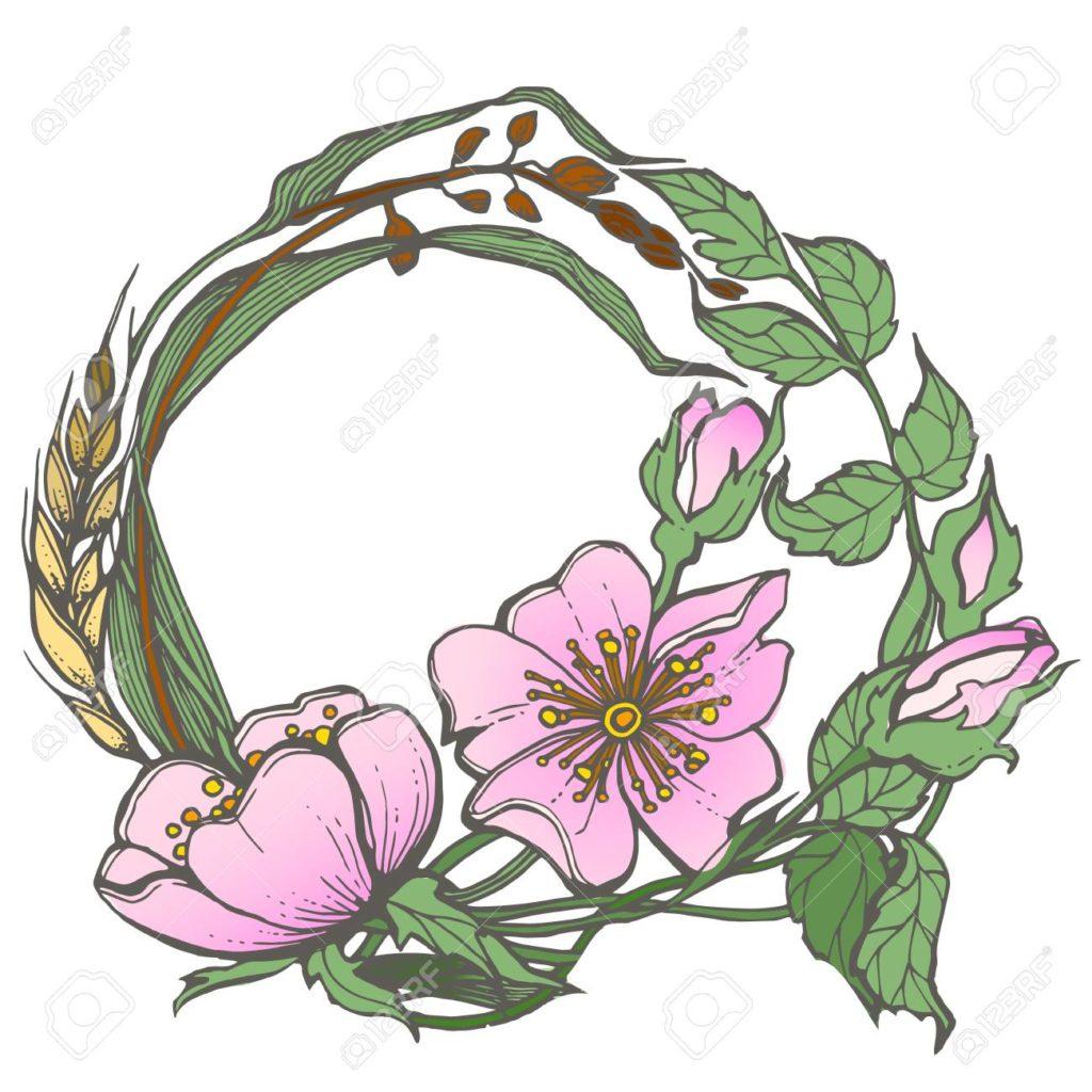 Dog Rose Flower Art