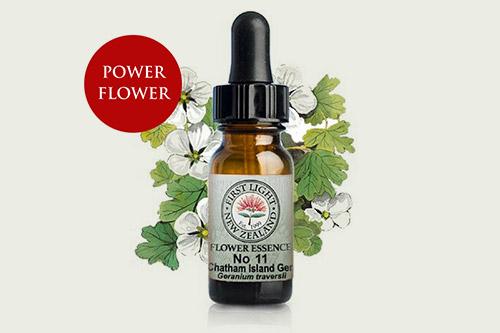 Heilala flower medicines