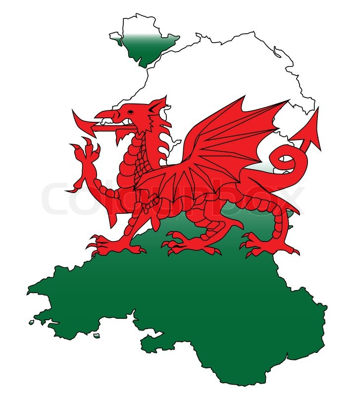 national flower of wales